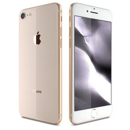 iPhone 8 64Gb Usato G.A Garanzia 1 anno Gold